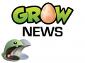 Grow wins at iFest!