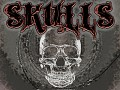 SkullS ● video & screens ●