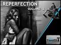 Reperfection - Volume 1 Released on Desura