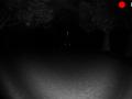 Slender parque un secreto