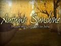 Autumn Sunshine: soon on Mod DB