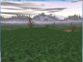 February 17, 2013 - Continuing and OpenGL Support