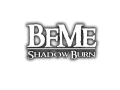 BFME: Shadow Burn V1.0 News (Part 1)