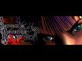 Character Focus: Sinara