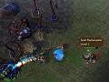 Warcraft vs Starcraft Information