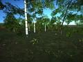 The new vegetation