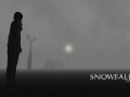 A First Look into the Snowfall Project