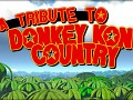 A Tribute To Donkey Kong Country is released!