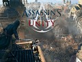 Players who find a lot of Glitch on Assassin's Creed Unity