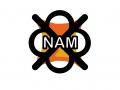 NAM Installation on Windows