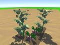 Farming some crops!