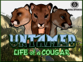 The Journey so Far(Untamed:Life of a Cougar Updates)