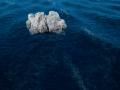 Update Progress - Ocean WIP 1/3
