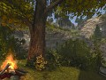 Meet forests of Vaduz
