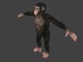 Status Report: Pathfinding, Dungeons, Monkey