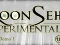 RoonSehv Experimentaliis - Demo