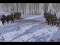 Vikingr Community Release: Finally ported to the newest version of Warband!