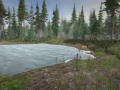 On the hunt - water, inventory, scope