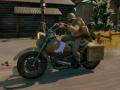 Town Garrisons, Patrol Motorcycle, Harvester