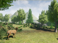 Transport and available playable animals