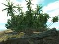 Coral Island. Real World