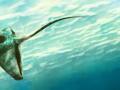 Mini Update #3: Underwater Sensation Pt. 2