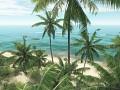 Coral Island. Final screenshots