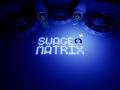 Swage Matrix