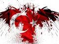 Better Turkey
