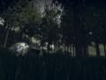 Forest Siege Returns!