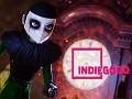 IndieGoGo Campaign!