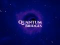 What is Quantum Bridges about?