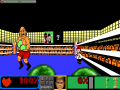 Punch-out Doom mod Macs last stand and Championship