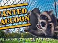 How we made Raccoon's simulator !