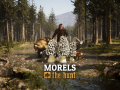 Morels Anniversary Update Now Live!