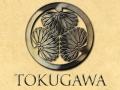 Sengoku Clan Introduction: Tokugawa