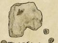 Leader leaves Thorlak Island temporarily