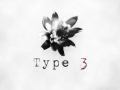Type 3 Update #2