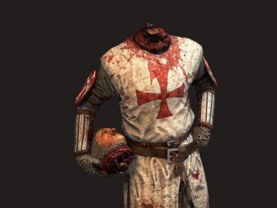 New Crusader Skin - Age of Chivalry