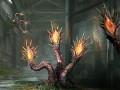 Hydra Reveal