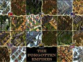 The Forgotten Empires 1.3 released
