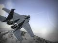Report 010: F-15