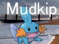 Mudkip 0.1 Beta 1
