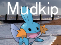Mudkip 0.1 Beta 4 Patcher