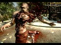 Reshade and SweetFX for Dead Island Riptide