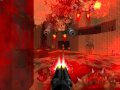 """DOOM & DOOM II"" blood-effects patch"
