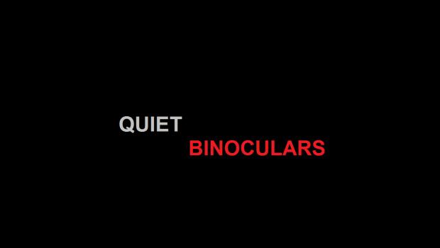 Call of Chernobyl   Quiet Binoculars