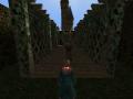 Ravenclaw Labyrinth