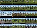 Knight, Bronze/Companion Cavalry Skin Pack