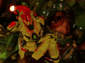 Doom 4 multiplayer for Doom 2 v .1
